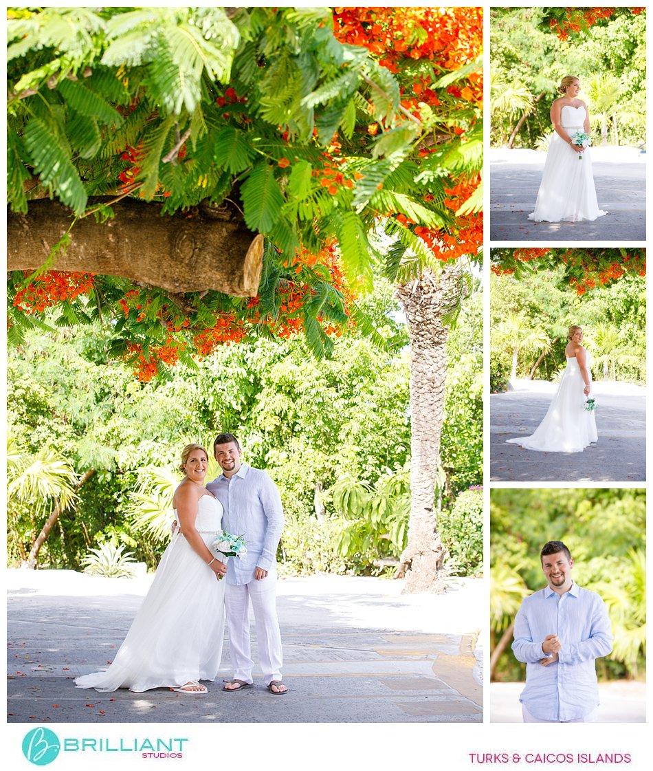 Wedding under Poiciana Tree in Turks and Caicos Islands