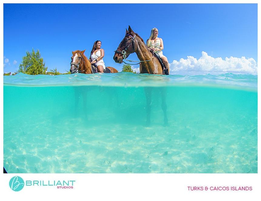 Underwater photo of horses on Long Bay beach