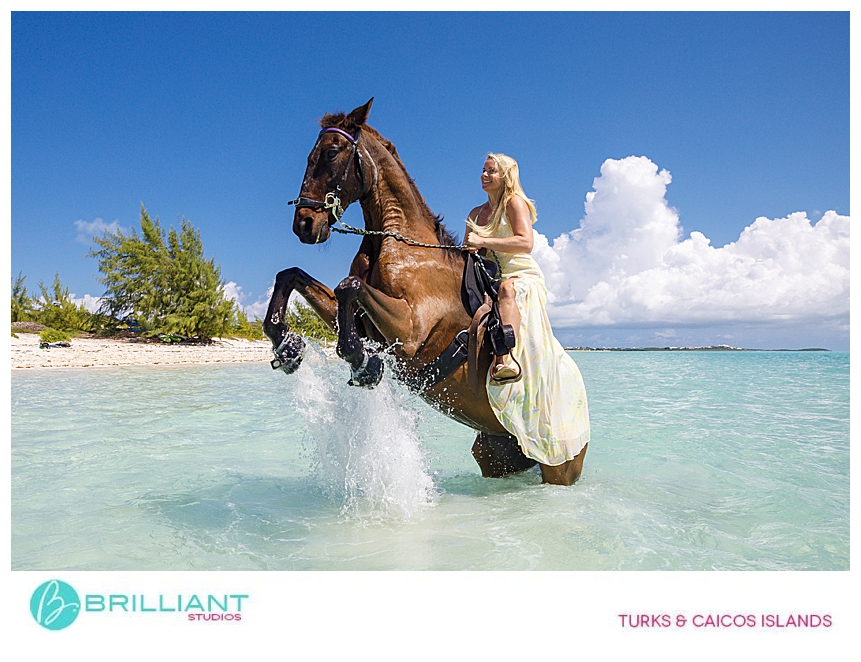Photographing horses in the Turks & Caicos